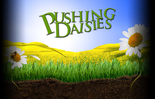 pushing-daisies-1